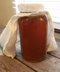 half gallon jar kombucha