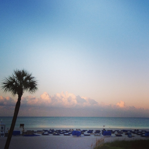 early morning at tradewinds