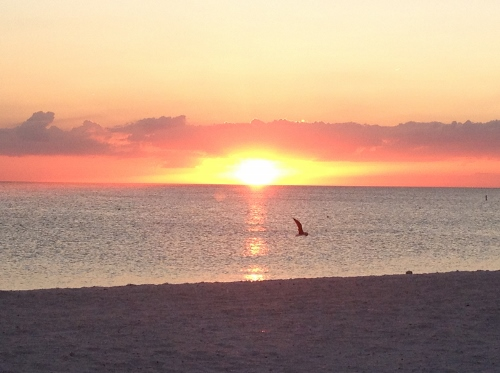 sunset at tradewinds 03
