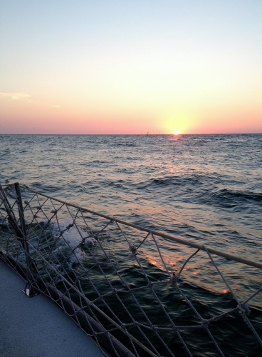 sunset sail dolphin landings