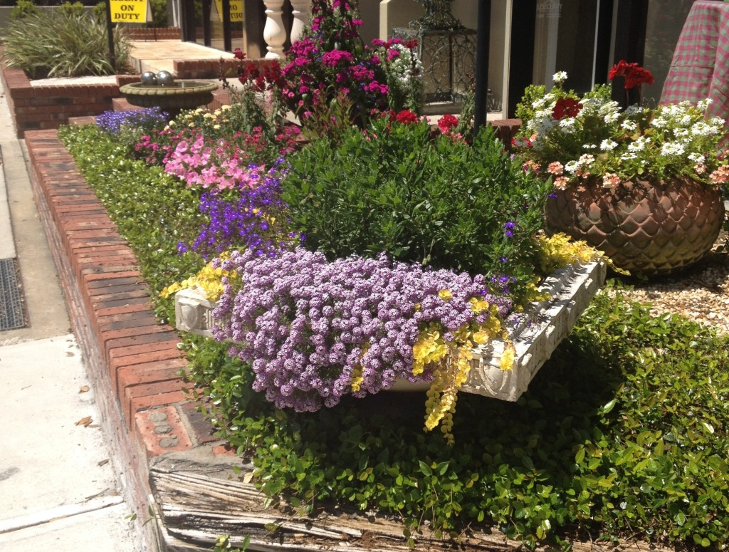 Flower Shop in Winter Park | In Johnna's Kitchen