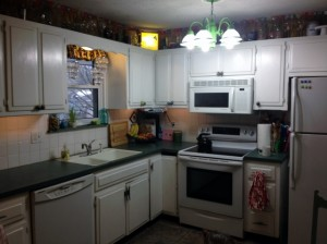 In Johnna's Kitchen before remodel