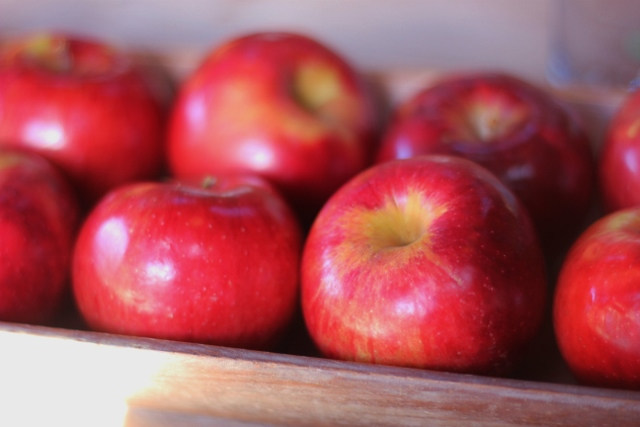 Missour apples at Green Dirt Farm