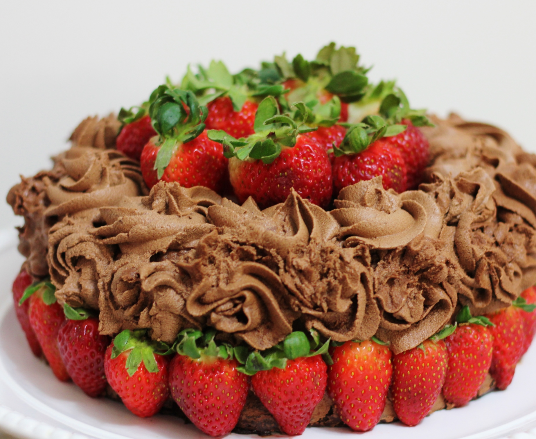 The Ultimate Chocolate Birthday Cake (gluten-free, dairy-free, egg ...