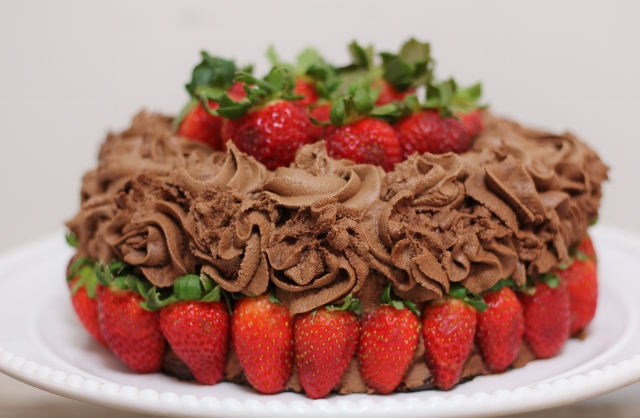 The Ultimate Chocolate Birthday Cake Gluten Free Dairy Egg Vegan Nut