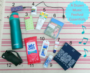 A Dozen Music Festival Essentials | In Johnna's Kitchen