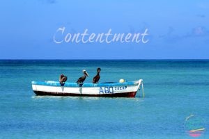 Soften Saturday: Contentment