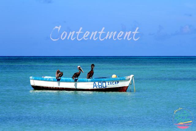 Contentment | In Johnna's Kitchen