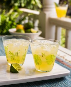Lucy Buffett's Highbrow Margarita